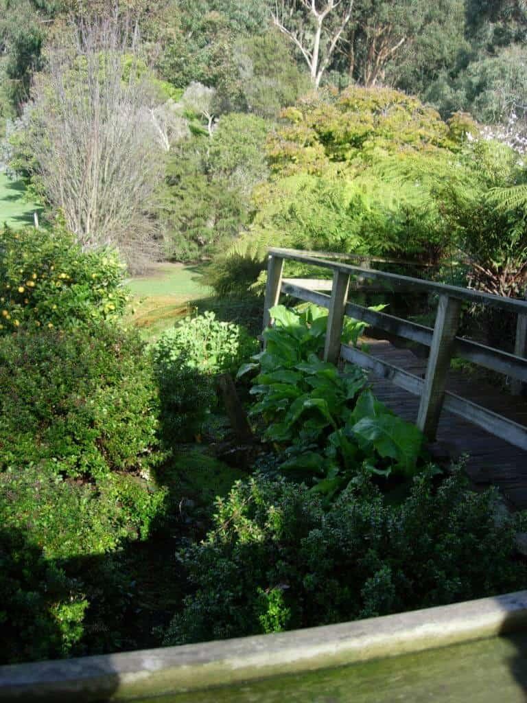 Open Gardens Day 13 Fischers Garden