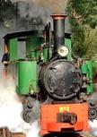 Steam train at Coal Creek