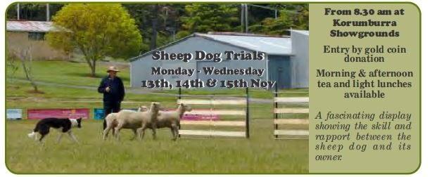 Sheep Trials