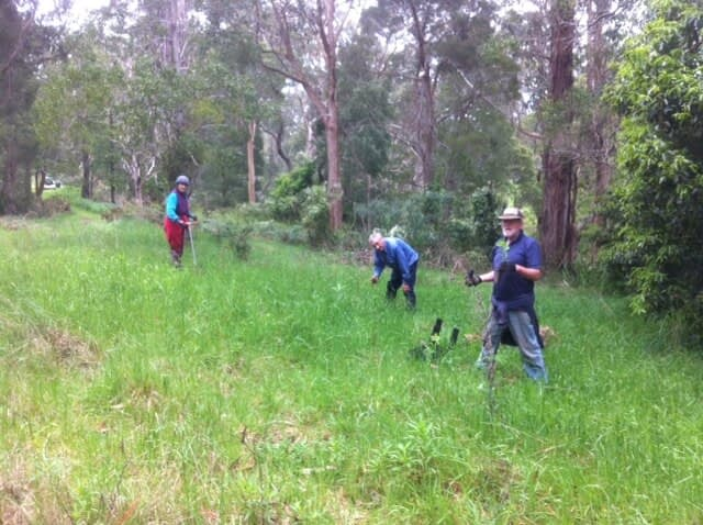 friends of ritchies reserve volunteers