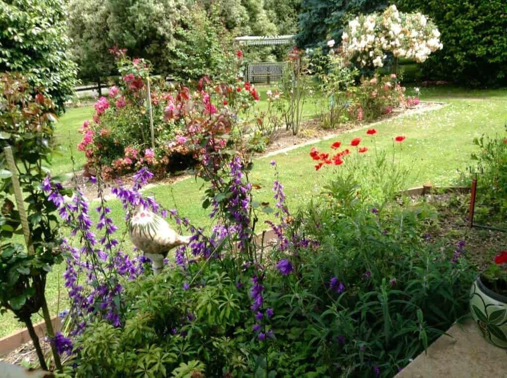 Open Gardens Day 11