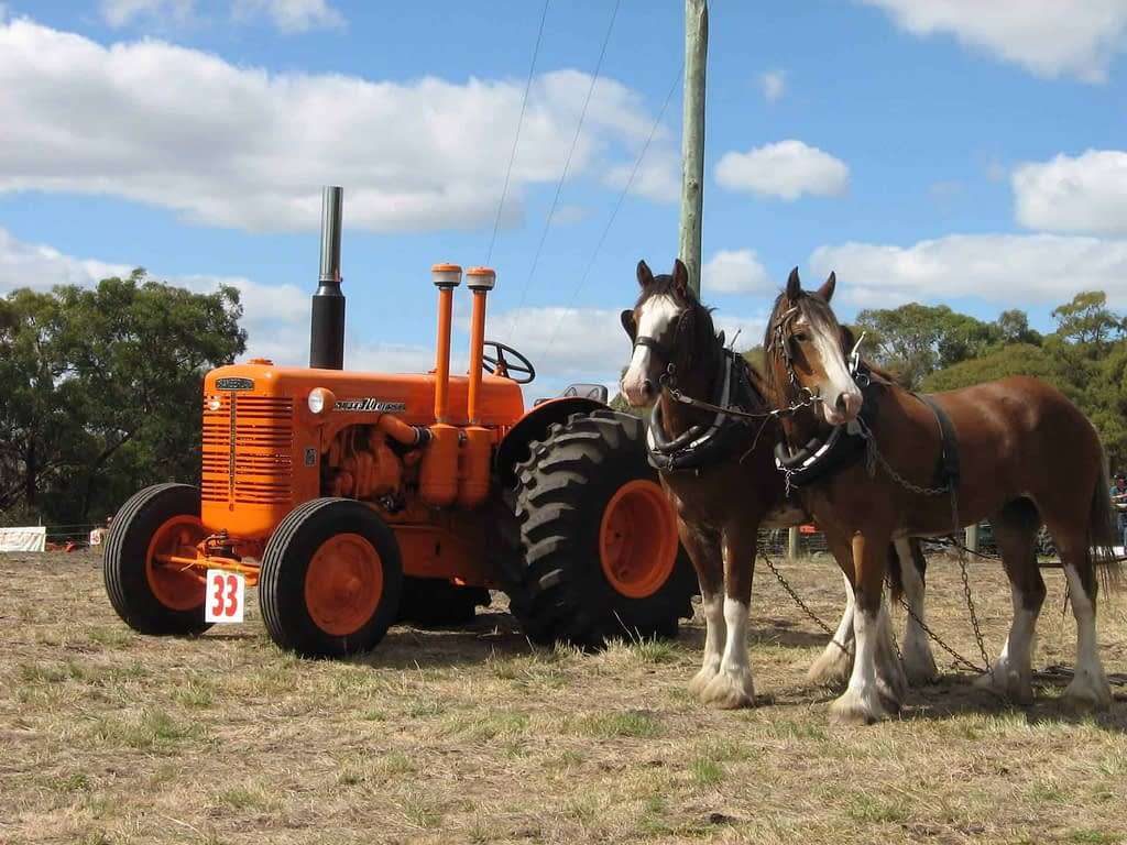 vintage horses and tractor