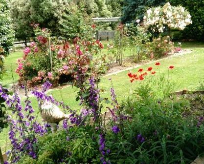 Fays Garden