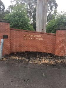 Kburra Botanic Gardens 0408