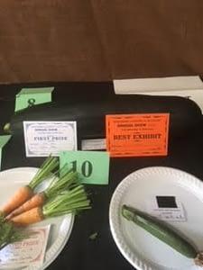 Korumburra Show 2017 - vegetables