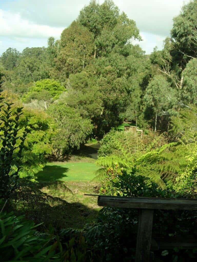 Open Gardens Day 12